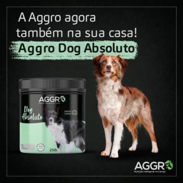 Aggro Nutrição Inteligente no Campo lança suplemento para cães